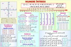Rapoarte si proportii / Numere intregi (duo)